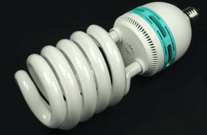 PBL Fluorescent Bulb 85wt. (equal to 425 wt. incandescent...
